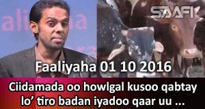 faaliyaha-01-10-2016-ciidamada-oo-howlgal-kusoo-qabtay-lo-tiro-badan-iyadoo